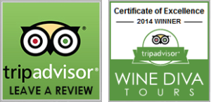 TRIP-ADVISOR-and-AWARD-button
